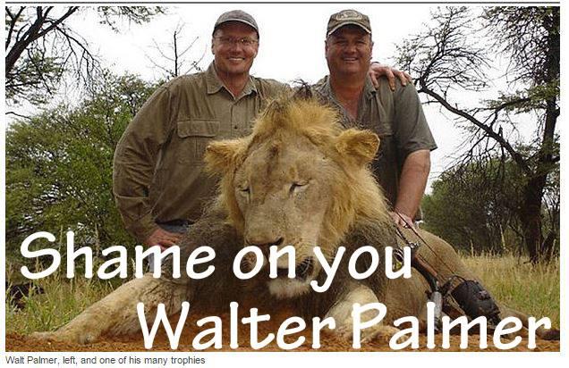 Walter-palmer-lion-killer